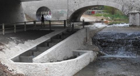 Garantizada movilidad peces Arlanzón al paso ciudad Burgos