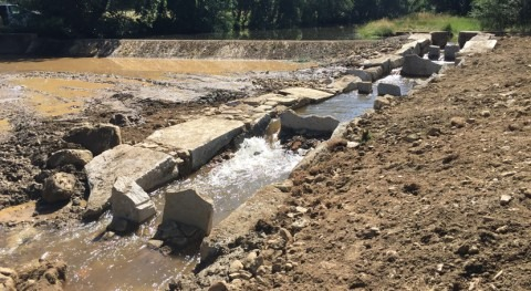 LIFE CIPRÍBER permite crear veintena rampas peces ríos salmantinos