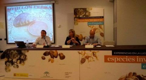 Suma esfuerzos lucha especies invasoras regadíos cuenca Guadalquivir