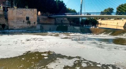 CHS investiga aparición espuma y peces muertos río Segura Murcia