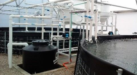 sistemas biológicos recirculación agua, solución producir alimentos México