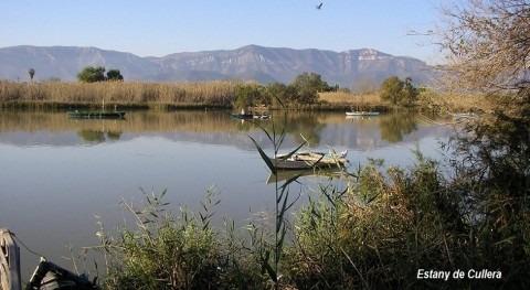 ¿Se pueden restaurar ecosistemas acuáticos aguas depuradas?