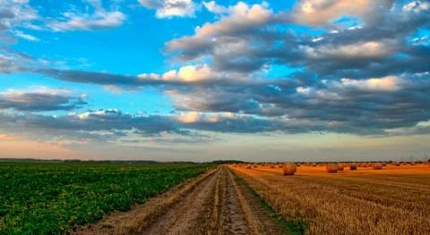Impulsar binomio EDAR-Agricultura mediante desarrollo fertilizantes base estruvita