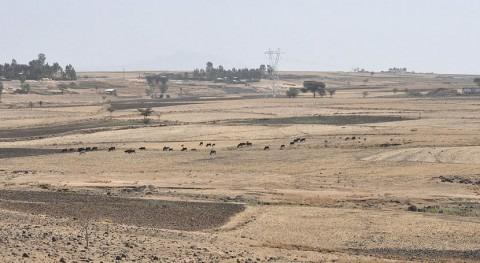 7 millones personas Etiopía necesitan 1.600 millones dólares debido sequía