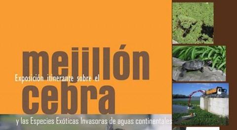 exposición itinerante mejillón cebra y otras especies invasoras llega Naupesca (Caspe)