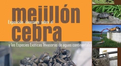 Exposición itinerante mejillón cebra y especies invasoras Alloz, Navarra