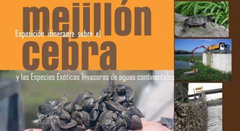 exposición itinerante especies invasoras viaja fin semana Guiamets (Tarragona)