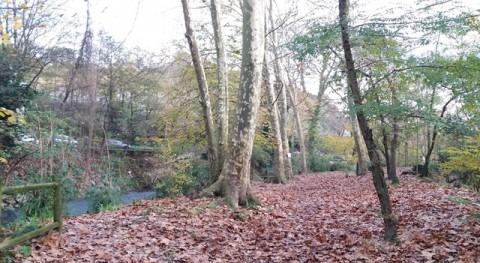 URA inicia hoy obras restauración ambiental río Oiartzun Errenteria (Gipuzkoa)