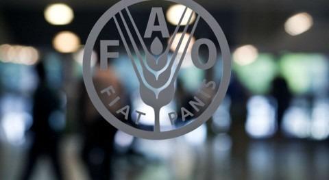 FAO y Consejo Mundial Agua refuerzan colaboración