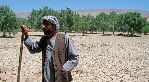 AHF y FAO apoyan agricultores afganos afectados conflictos y desastres naturales