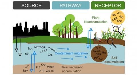 Fármacos agua riego: papel suelo atenuación natural riesgo salud
