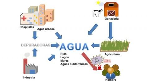 Papel agua resistencia antibióticos