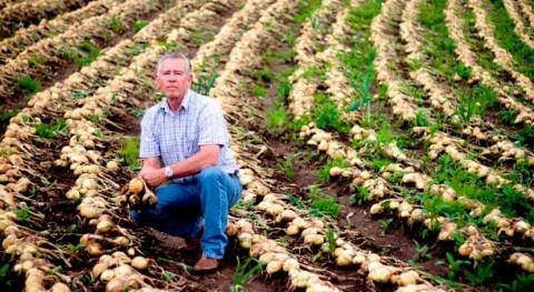 Abierta convocatoria proyectos agrícolas sostenibles frente al cambio climático