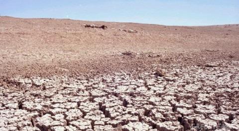 territorio español afronta proceso desertificación preocupante