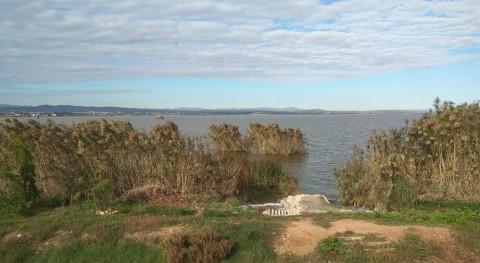 L'Albufera participa iniciativa internacional innovadora medir calidad aguas
