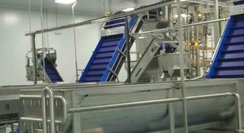 Sistema desinfección producción alimentos