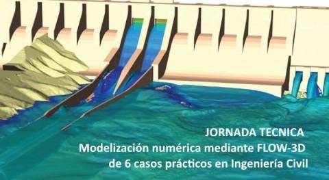 Jornada práctica manejo Flow-3D 6 casos reales ingeniería civil