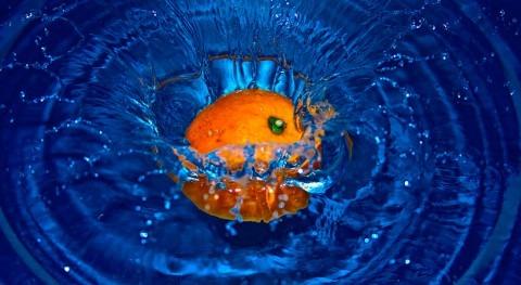 ¿Cuál es importancia agua producción alimentos?