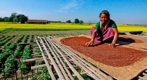 Acceso al agua y nutrición países desarrollo