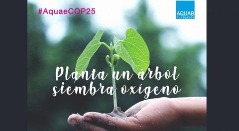 Fundación Aquae compensará CO2 todos asistentes que acudan COP25