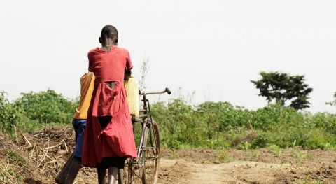 Fallecen 20 personas Zimbabue nuevo brote cólera