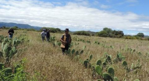 Comienza manejo integral cuencas Omereque, Mizque y Totora