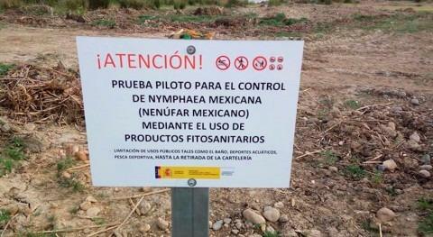 SEO BirdLife denuncia falta transparencia ensayos glifosato río Guadiana