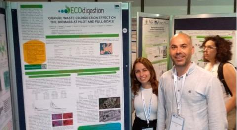Global Omnium reutiliza piel naranja aumentar producción biogás depuradoras