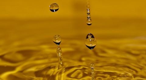 Investigadores mexicanos inactivan bacterias agua utilizando nanotecnología