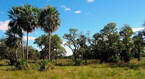 nuevo mapa previene riesgos hídricos zona Gran Chaco