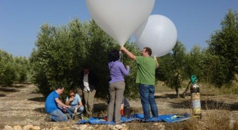 terreno Vega Granada se hunde centímetro año consecuencia sequía