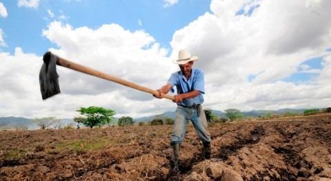 naturaleza puede combatir cambio climático zonas más vulnerables mundo