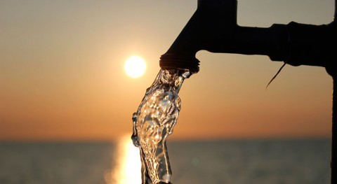 ¿Cuántos protozoos hay agua que bebemos?