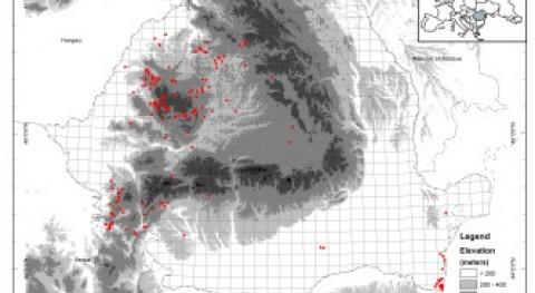 Diversidad crustáceos aguas subterráneas Rumanía
