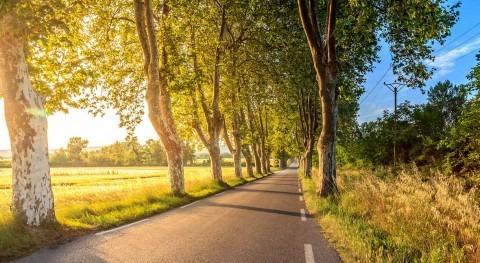 importancia COP25 y qué deberíamos lograr avanzar