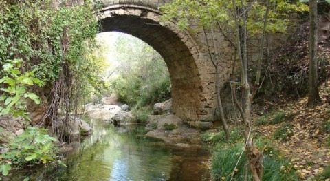 lluvias cuenca Guadalquivir aumentan 6% durante comienzo año hidrológico