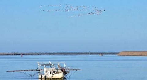 Guadalquivir (WWF).