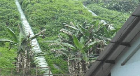 INDE Guatemala, repotenciar 4 hidroeléctricas antiguas