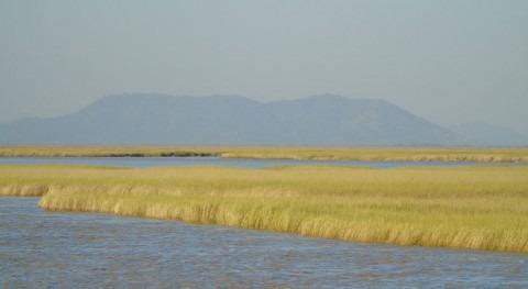 Birmania designa área protegida Gulf of Mottama como sitio Ramsar