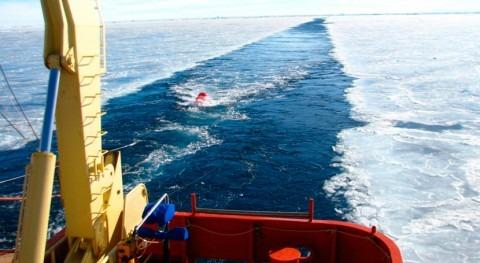 capa hielo Antártida oriental tiene historial inestabilidad