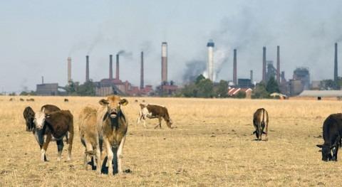 Antonio Guterres insta líderes emprender acción audaz clima