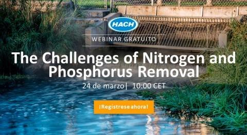 Webinar: desafíos eliminación nitrógeno y fósforo