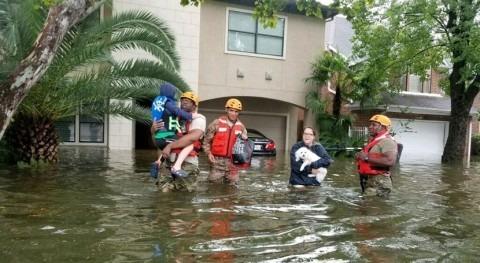 Texas eleva más 80 muertos debido al huracán Harvey