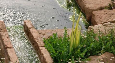 Nuevo método capturar plomo y cadmio ríos y balsas agua forma selectiva
