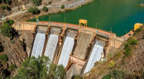 sedimentos hidroeléctricas amenazan fauna acuática Amazonía