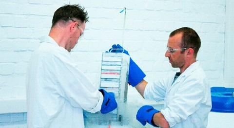 Nuevas pistas hielo podrían mejorar criopreservación