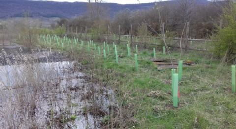 URA ha restaurado Humedal Pedroko Agurain