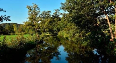 humedales desaparecen tres veces más rápido que bosques