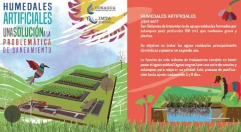Implementación Sistemas Humedales Artificiales cuenca Valle Bravo Amanalco