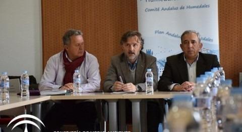 Andalucía incrementa 16 inventario humedales y supera 7 veces media nacional